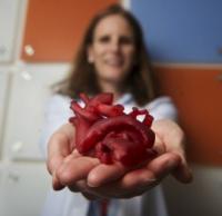 Стволовая 3D-печать замахнулась на сердце