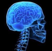 Предрасположенность к болезни Альцгеймера зависит от группы крови