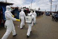 Ученые ищут тех, у кого иммунитет к Эболе