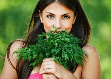 Травы на страже здоровья
