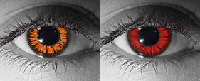 Какие контактные линзы носили актеры в фильмах Сумеречной саги?