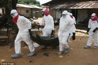 Ученые бьют тревогу: Эбола мутирует