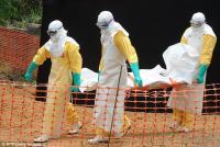 Новые вакцины от Эболы могут быстро устареть