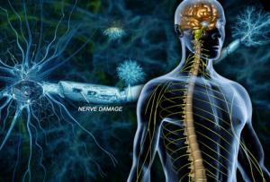 Гид по рассеянному склерозу