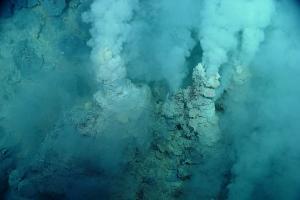 ДНК-анализ: Прародитель всего живого на Земле был лишь наполовину живым