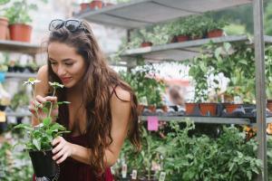 8 растений с суперспособностями для очищения Вашей кожи