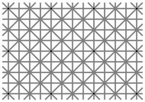 Вот почему вы не можете увидеть все 12 черных точек на этой оптической иллюзии