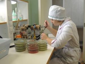 Инструкция по охране труда при санитарно-профилактических работах: Общие положения