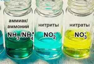 Отравление аквариума аммиаком и нитратами