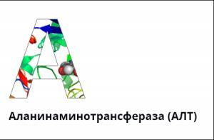 Причины, влияющие на уровень содержания энзимов печени аланинаминотранферазы