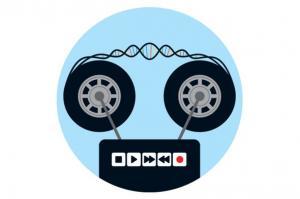 Бактериальный «магнитофон» может хранить данные в ДНК