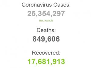Число заражений COVID в мире превысило 25 миллионов