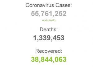 COVID-19 ровно год