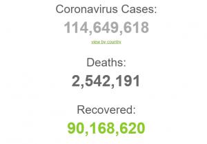 Более 2,5 млн смертей от COVID-19