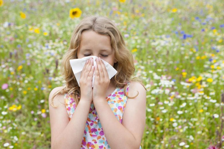Вакцинация против сезонной аллергии скоро станет реальностью!