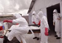 Ученые нашли вирус Эбола в сперме у выживших пациентов