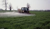 Пестициды вызывают аутизм?