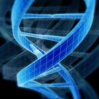 Психические расстройства научились распознавать с помощью генетики